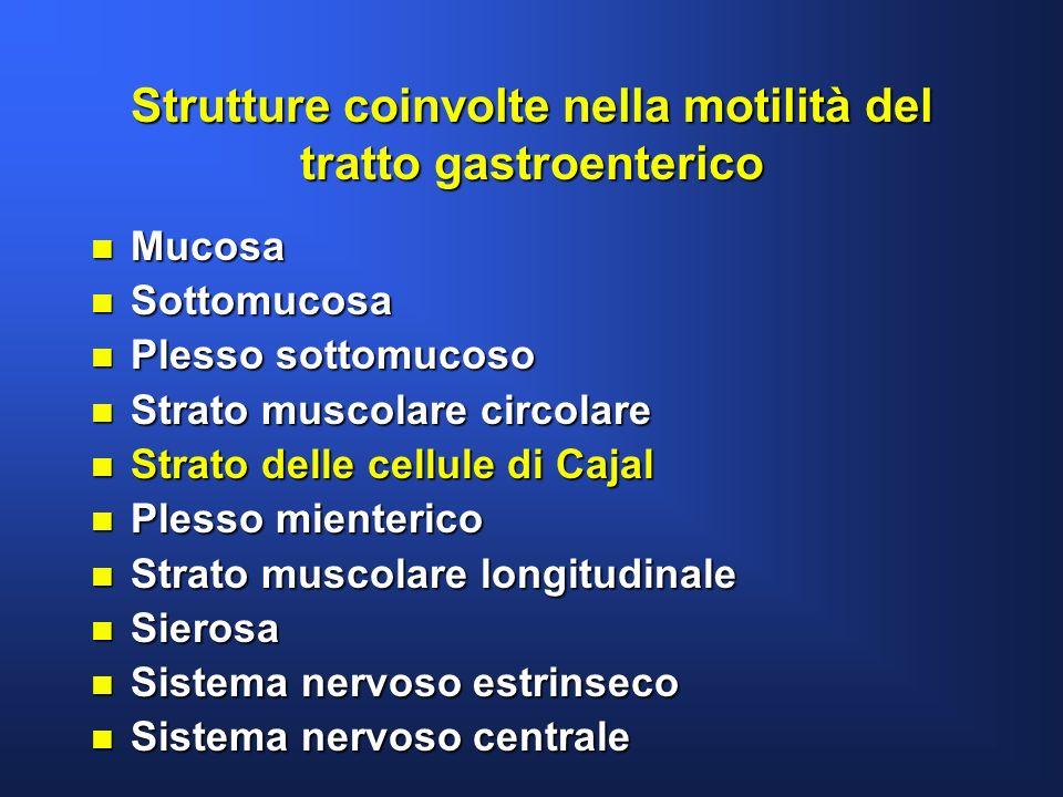 Strutture coinvolte nella motilità del tratto gastroenterico