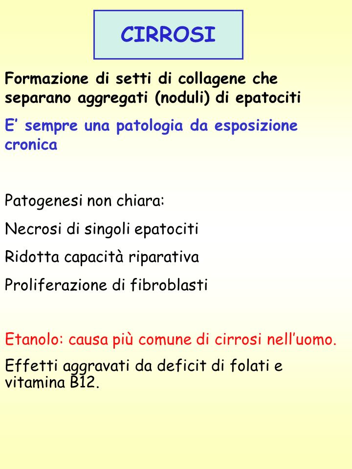 CIRROSIFormazione di setti di collagene che separano aggregati (noduli) di epatociti. E' sempre una patologia da esposizione cronica.