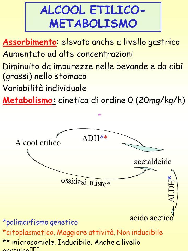 ALCOOL ETILICO-METABOLISMO