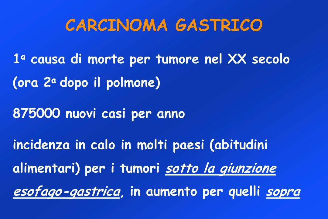 CARCINOMA GASTRICO 1a causa di morte per tumore nel XX secolo (ora 2a dopo il polmone) 875000 nuovi casi per anno.