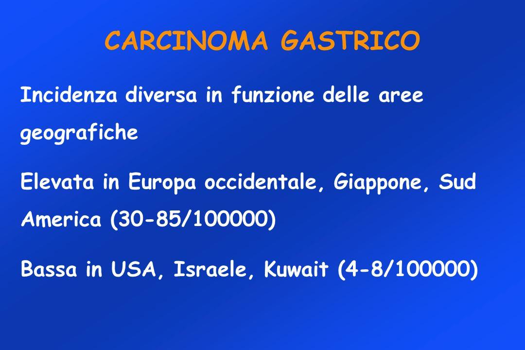 CARCINOMA GASTRICO Incidenza diversa in funzione delle aree geografiche. Elevata in Europa occidentale, Giappone, Sud America (30-85/100000)