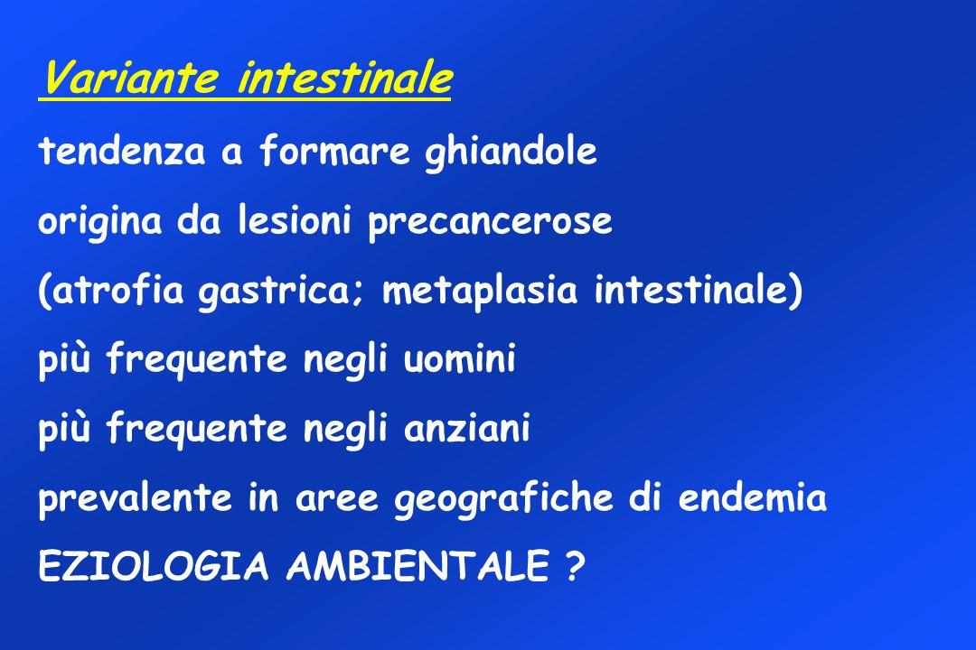 Variante intestinale tendenza a formare ghiandole