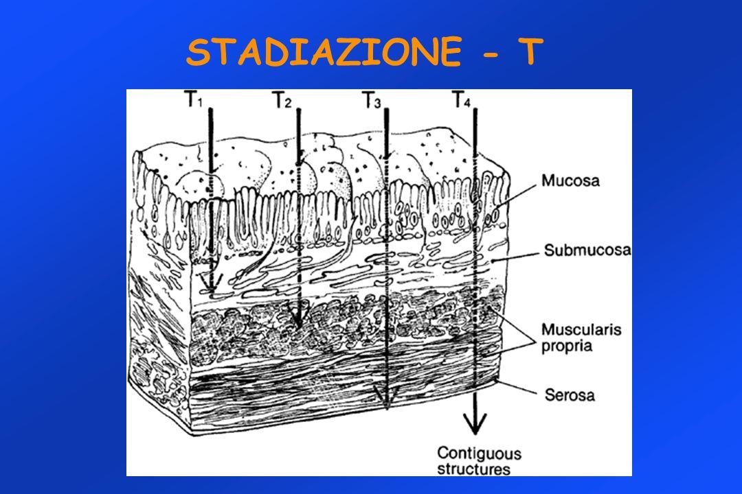STADIAZIONE - T