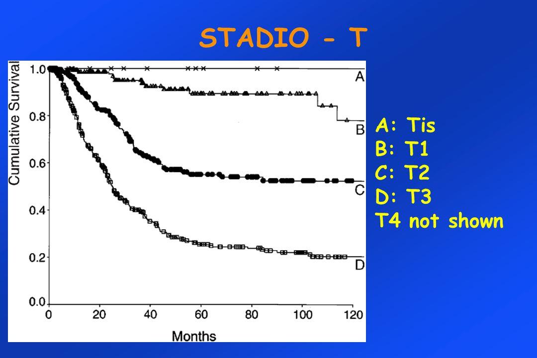 STADIO - T A: Tis B: T1 C: T2 D: T3 T4 not shown
