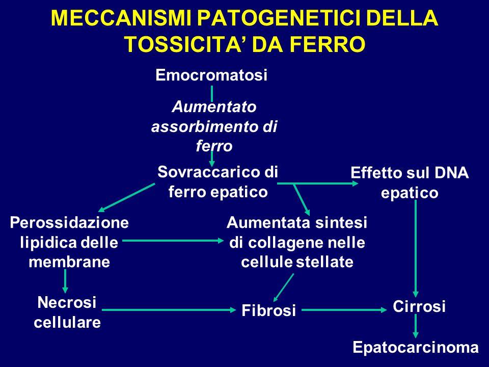 MECCANISMI PATOGENETICI DELLA TOSSICITA' DA FERRO