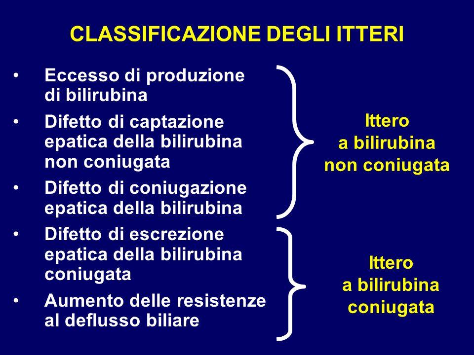 CLASSIFICAZIONE DEGLI ITTERI