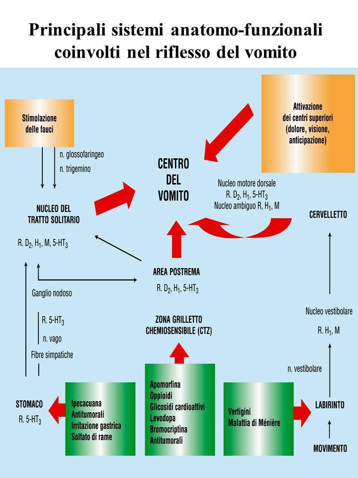 Principali sistemi anatomo-funzionali coinvolti nel riflesso del vomito