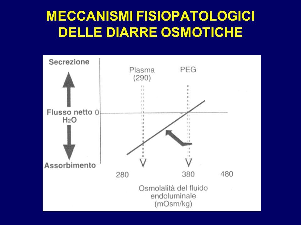 MECCANISMI FISIOPATOLOGICI DELLE DIARRE OSMOTICHE