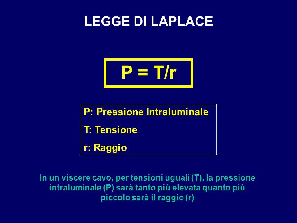 P = T/r LEGGE DI LAPLACE P: Pressione Intraluminale T: Tensione