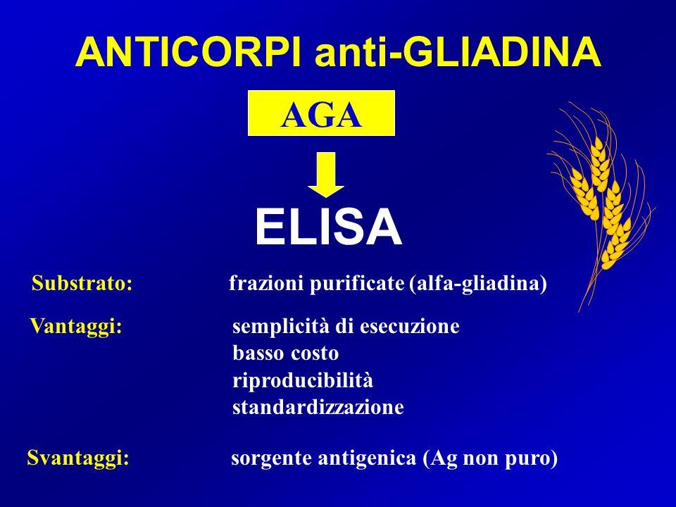 ANTICORPI anti-GLIADINA
