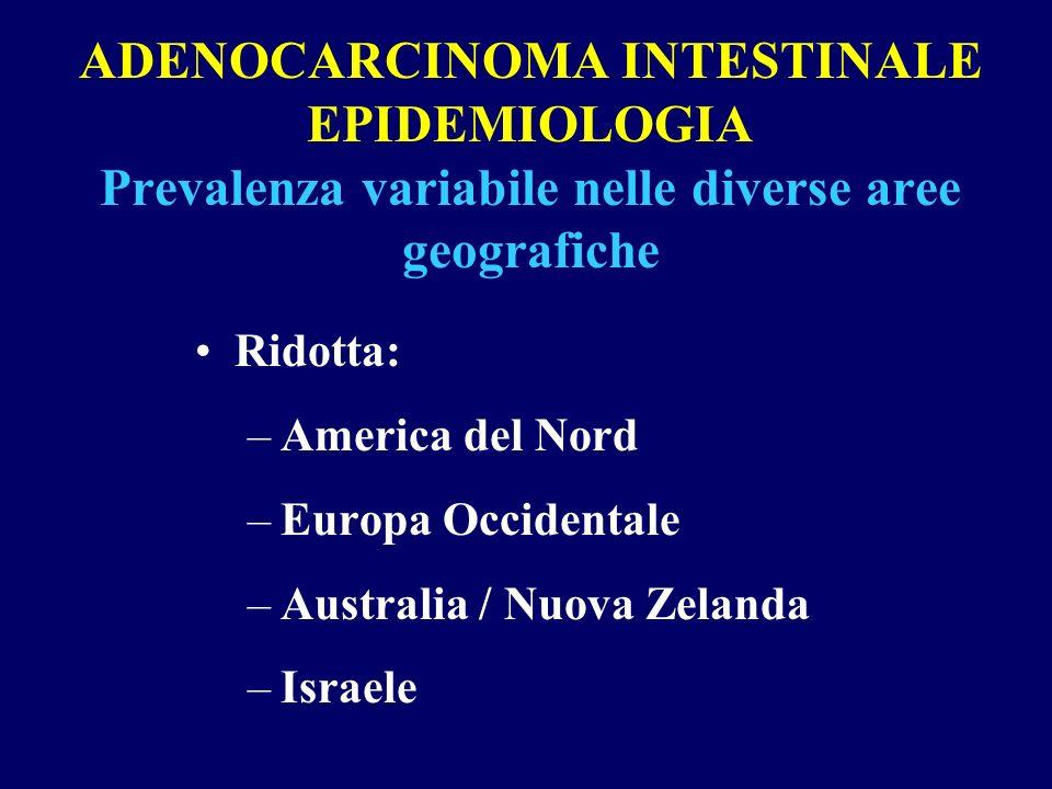 ADENOCARCINOMA INTESTINALE EPIDEMIOLOGIA Prevalenza variabile nelle diverse aree geografiche