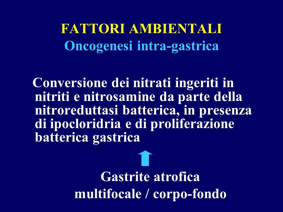 FATTORI AMBIENTALI Oncogenesi intra-gastrica