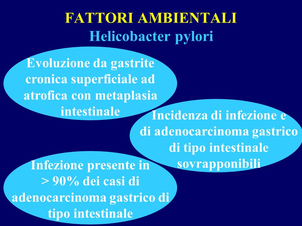 FATTORI AMBIENTALI Helicobacter pylori