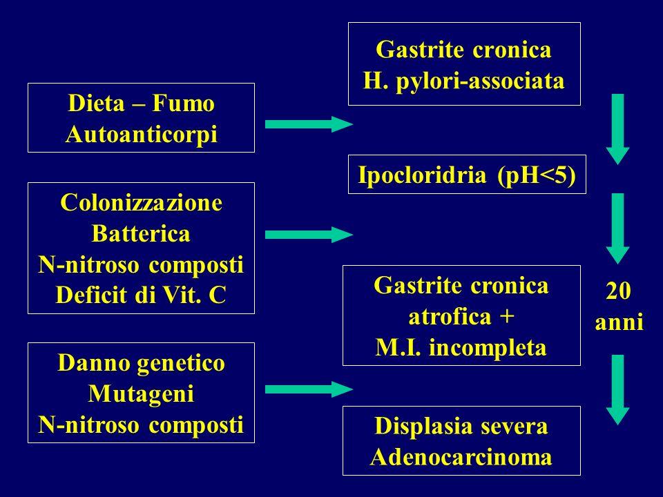 Gastrite cronica H. pylori-associata