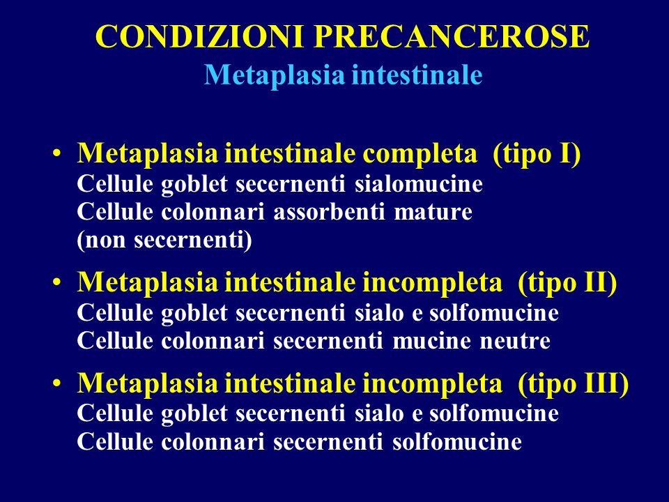 CONDIZIONI PRECANCEROSE Metaplasia intestinale