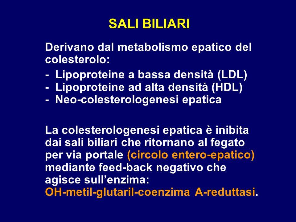 SALI BILIARI Derivano dal metabolismo epatico del colesterolo: