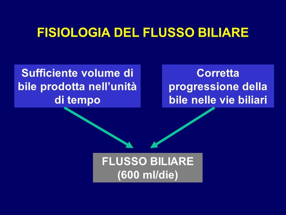 FISIOLOGIA DEL FLUSSO BILIARE