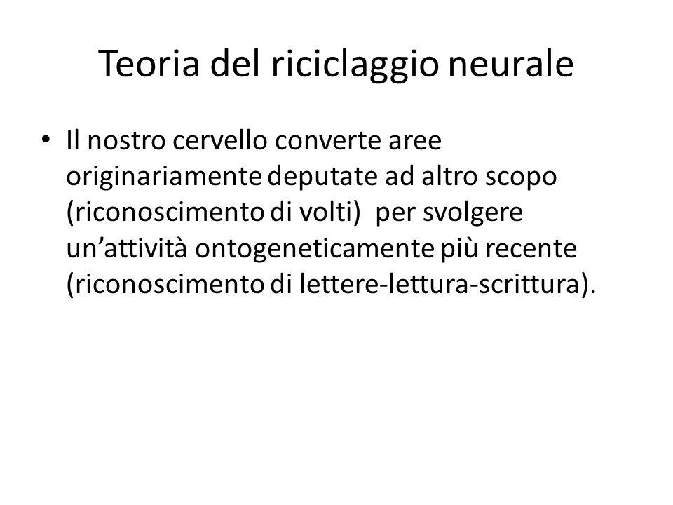 Teoria del riciclaggio neurale