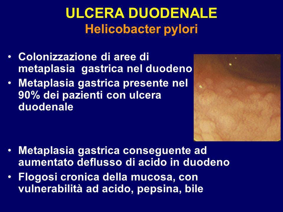 ULCERA DUODENALE Helicobacter pylori