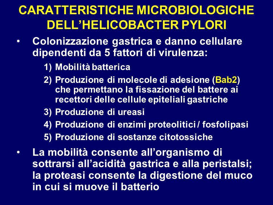 CARATTERISTICHE MICROBIOLOGICHE DELL'HELICOBACTER PYLORI