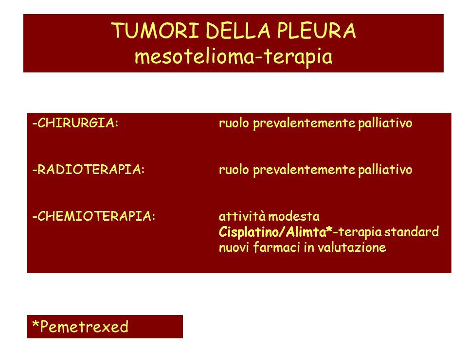 TUMORI DELLA PLEURA mesotelioma-terapia