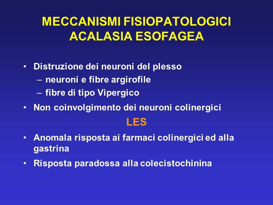 MECCANISMI FISIOPATOLOGICI ACALASIA ESOFAGEA