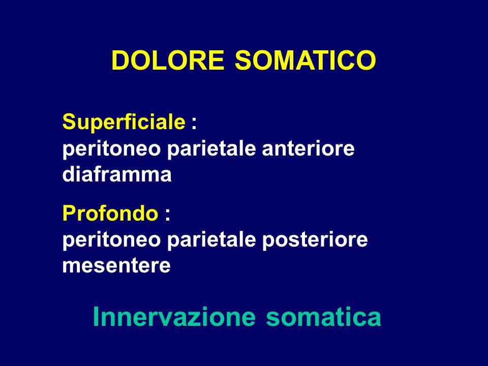 Innervazione somatica