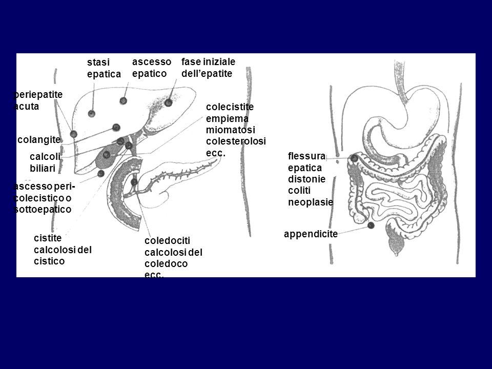 stasi epatica ascesso epatico. fase iniziale dell'epatite. periepatite acuta. colecistite empiema miomatosi colesterolosi ecc.