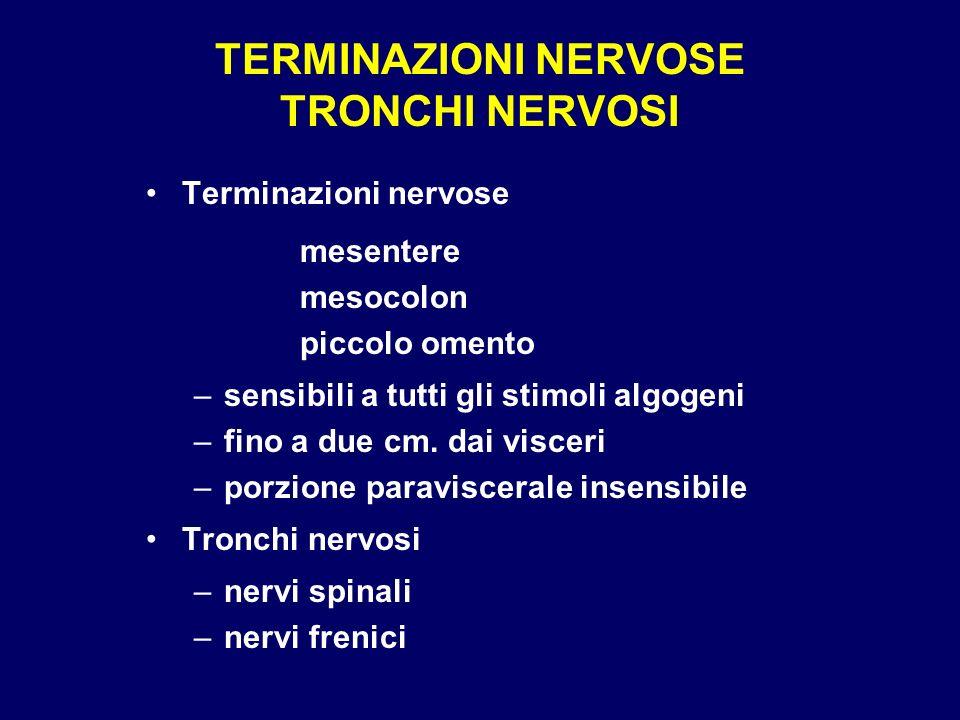 TERMINAZIONI NERVOSE TRONCHI NERVOSI