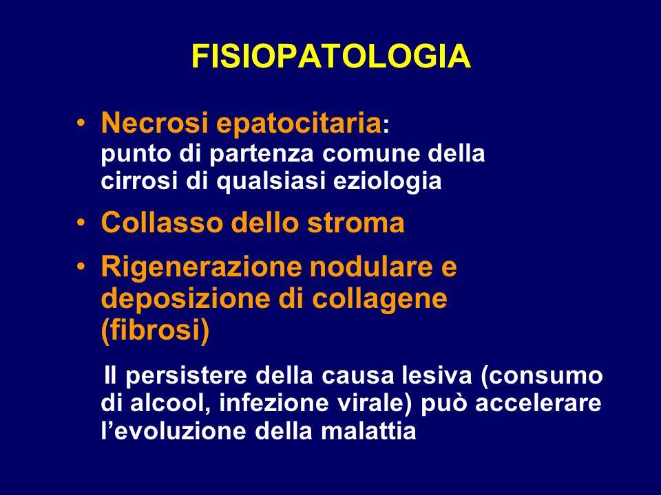 FISIOPATOLOGIA Necrosi epatocitaria: punto di partenza comune della cirrosi di qualsiasi eziologia.