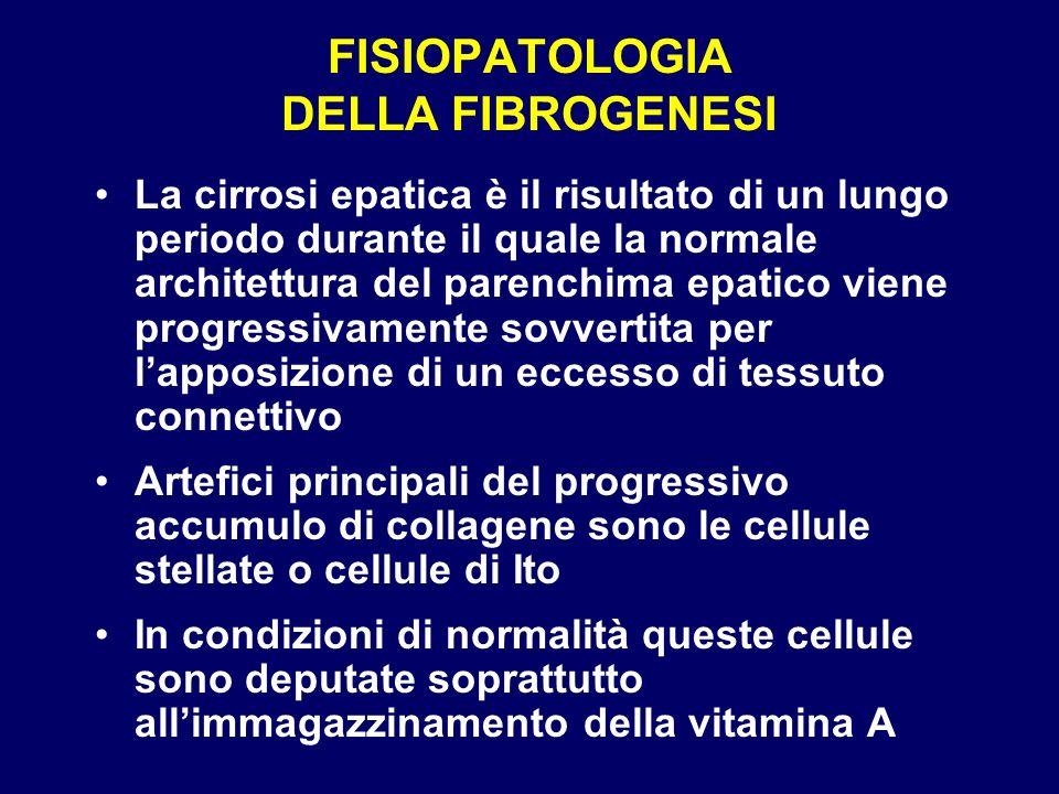 FISIOPATOLOGIA DELLA FIBROGENESI