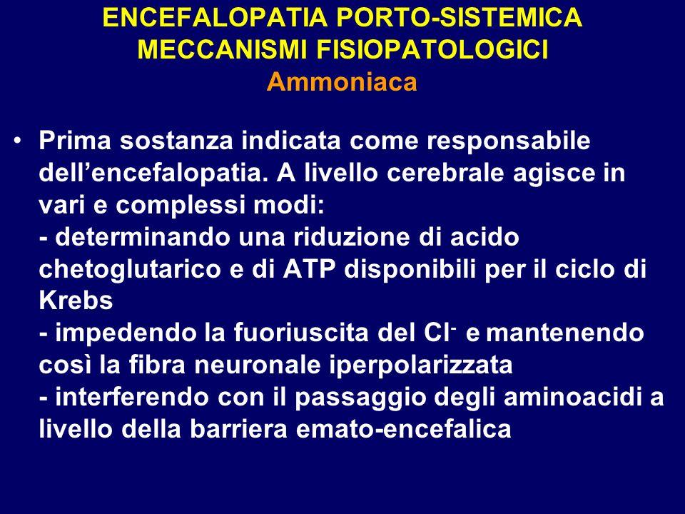ENCEFALOPATIA PORTO-SISTEMICA MECCANISMI FISIOPATOLOGICI Ammoniaca