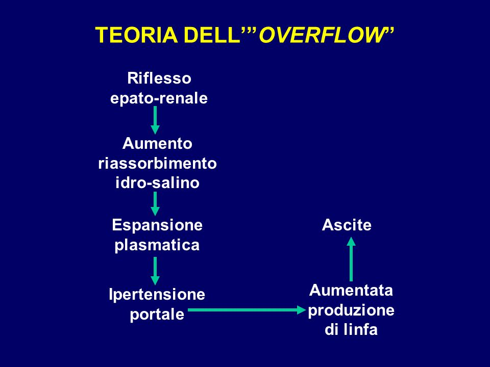 TEORIA DELL' OVERFLOW