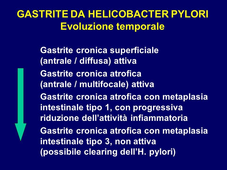 GASTRITE DA HELICOBACTER PYLORI Evoluzione temporale