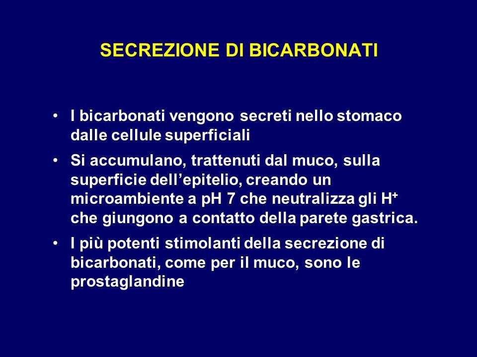 SECREZIONE DI BICARBONATI