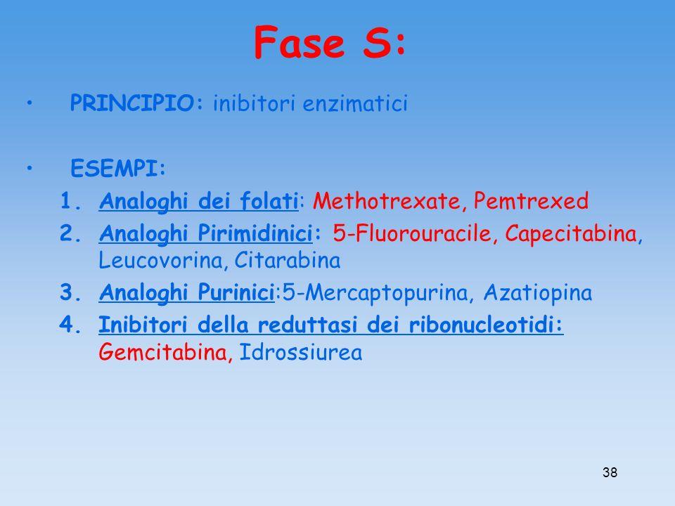 Fase S: PRINCIPIO: inibitori enzimatici ESEMPI: