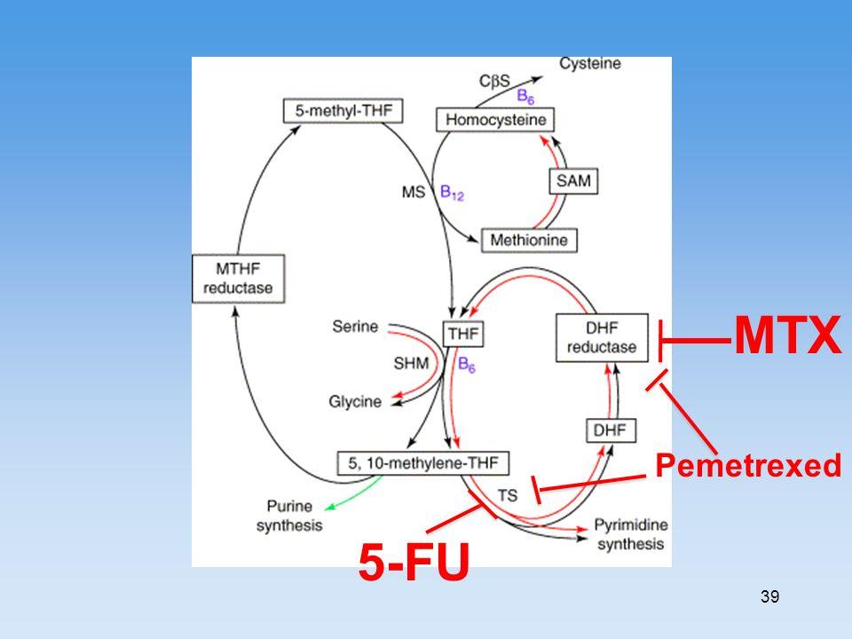 MTX Pemetrexed 5-FU