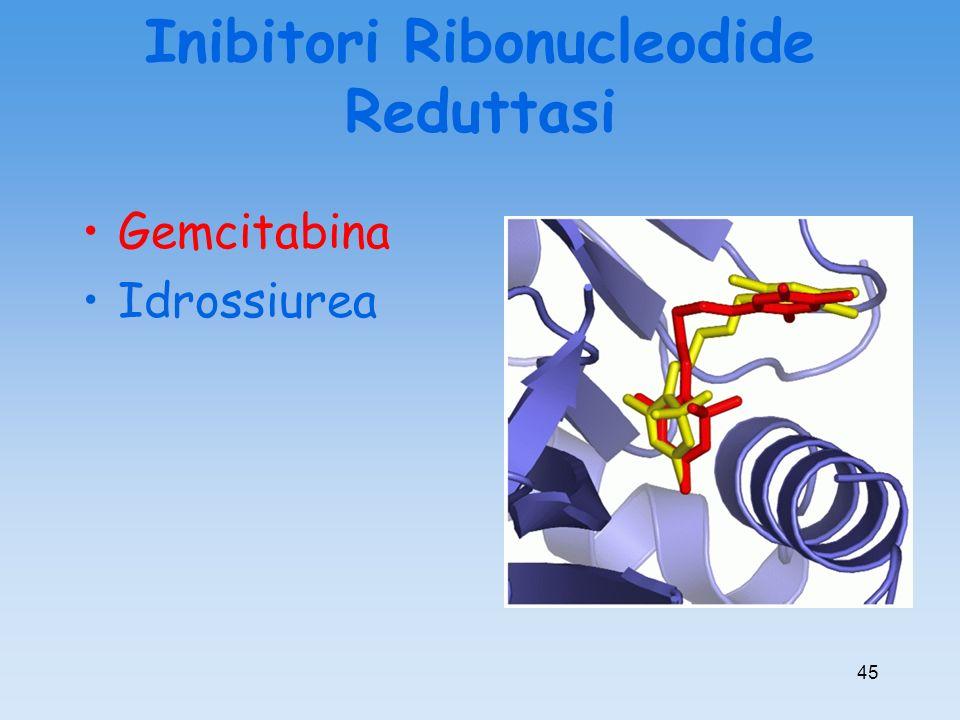 Inibitori Ribonucleodide Reduttasi