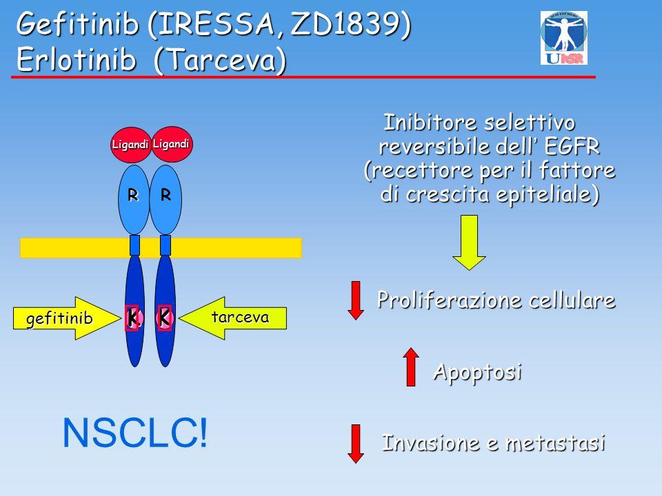 Gefitinib (IRESSA, ZD1839) Erlotinib (Tarceva)