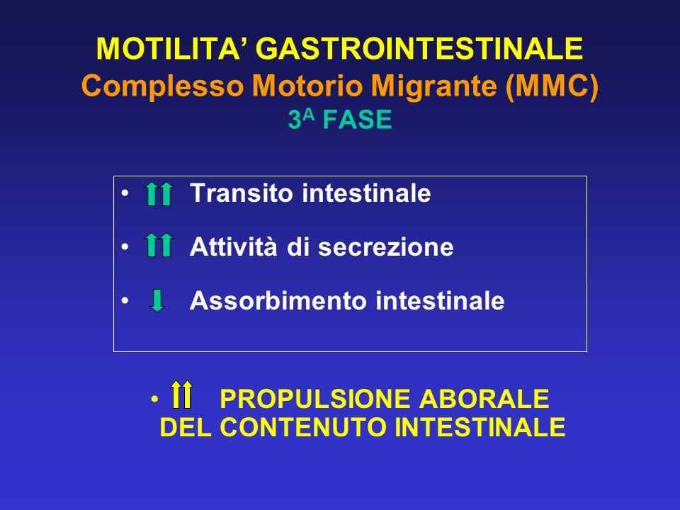 MOTILITA' GASTROINTESTINALE Complesso Motorio Migrante (MMC) 3A FASE