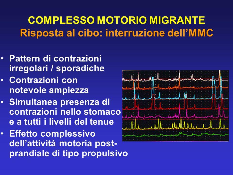 COMPLESSO MOTORIO MIGRANTE Risposta al cibo: interruzione dell'MMC