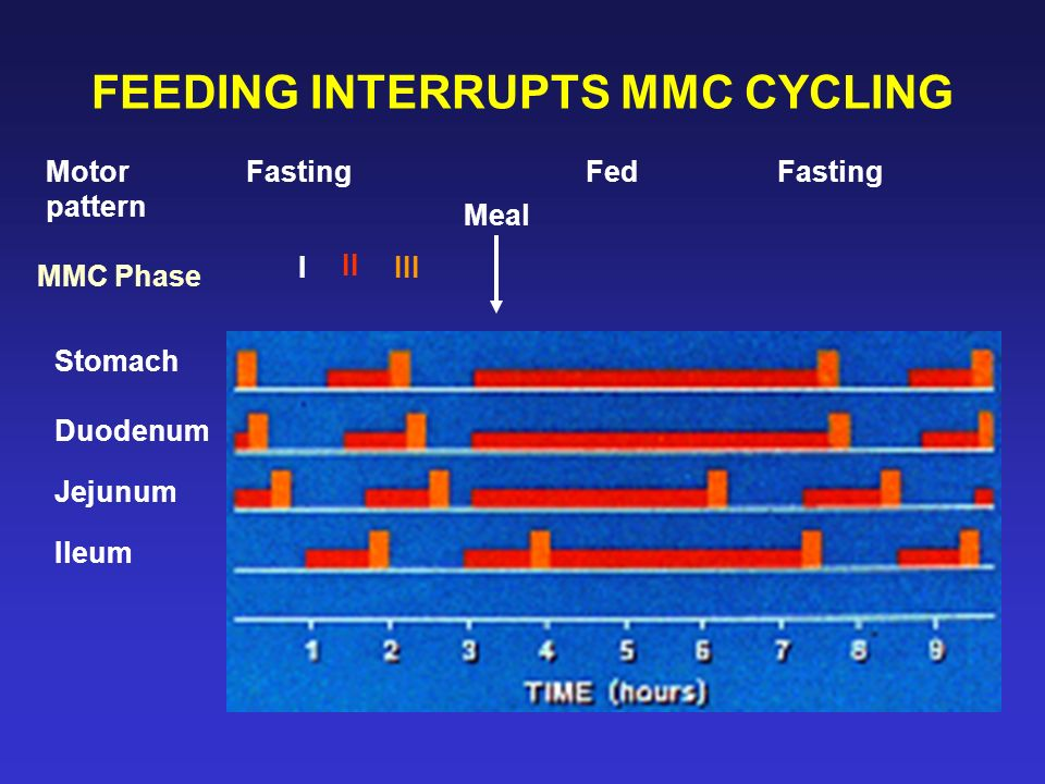 FEEDING INTERRUPTS MMC CYCLING