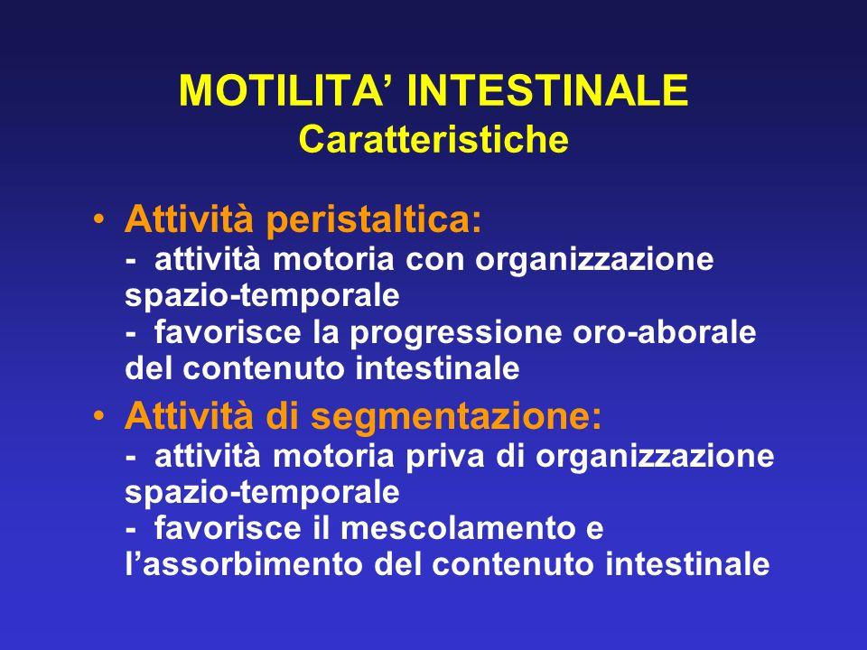 MOTILITA' INTESTINALE Caratteristiche