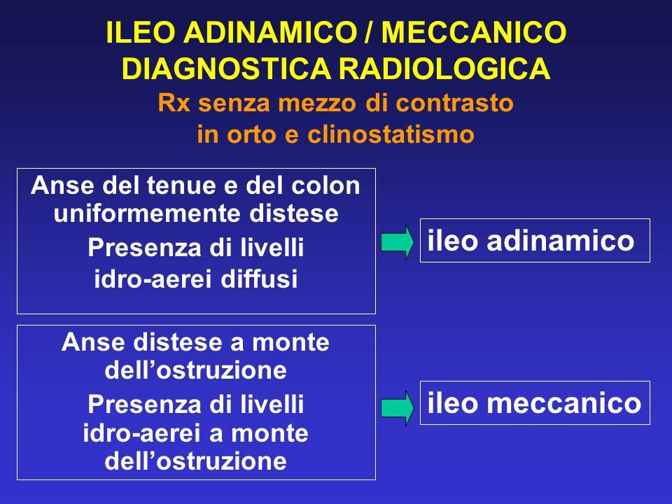 ILEO ADINAMICO / MECCANICO DIAGNOSTICA RADIOLOGICA Rx senza mezzo di contrasto in orto e clinostatismo
