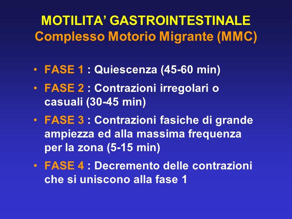 MOTILITA' GASTROINTESTINALE Complesso Motorio Migrante (MMC)