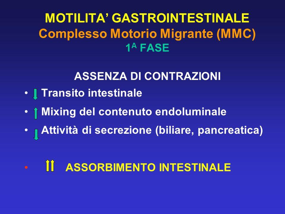 MOTILITA' GASTROINTESTINALE Complesso Motorio Migrante (MMC) 1A FASE
