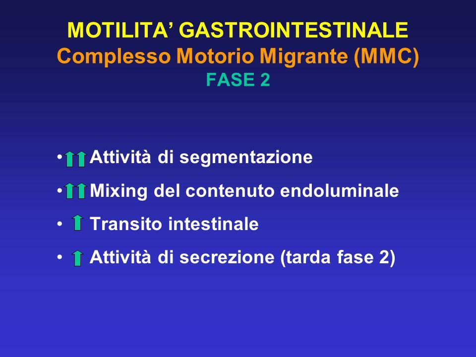 MOTILITA' GASTROINTESTINALE Complesso Motorio Migrante (MMC) FASE 2