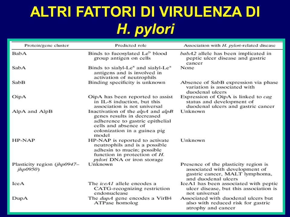 ALTRI FATTORI DI VIRULENZA DI H. pylori