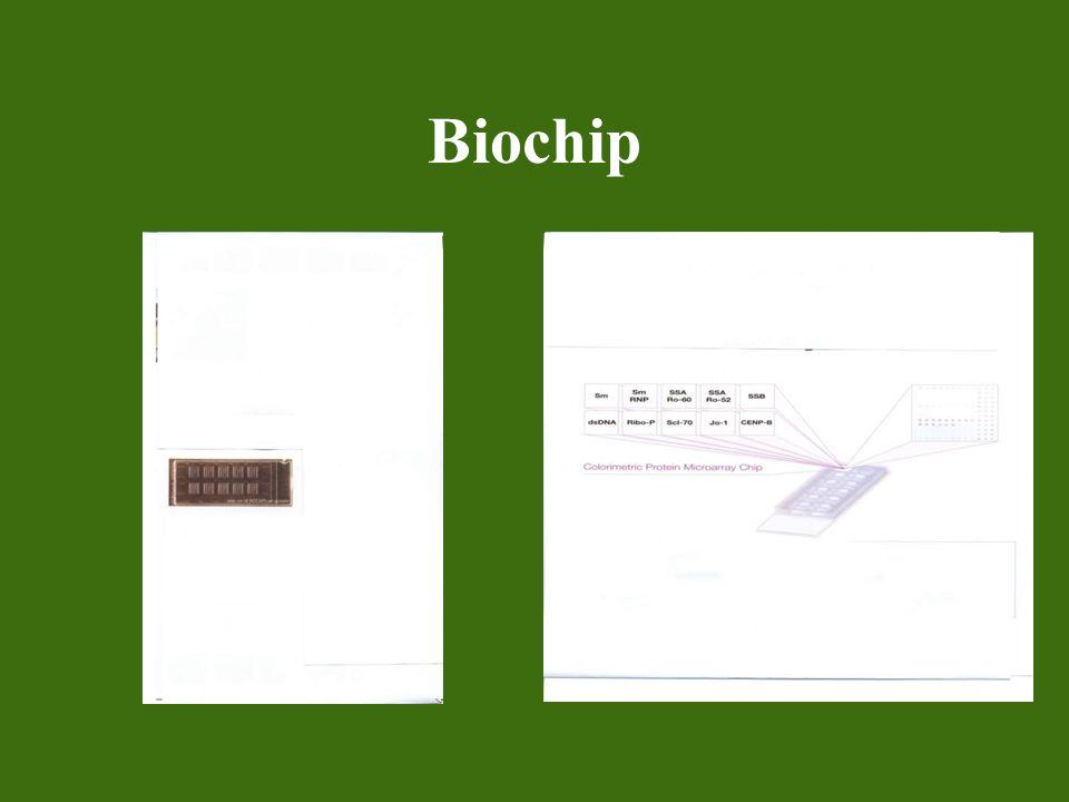 Biochip