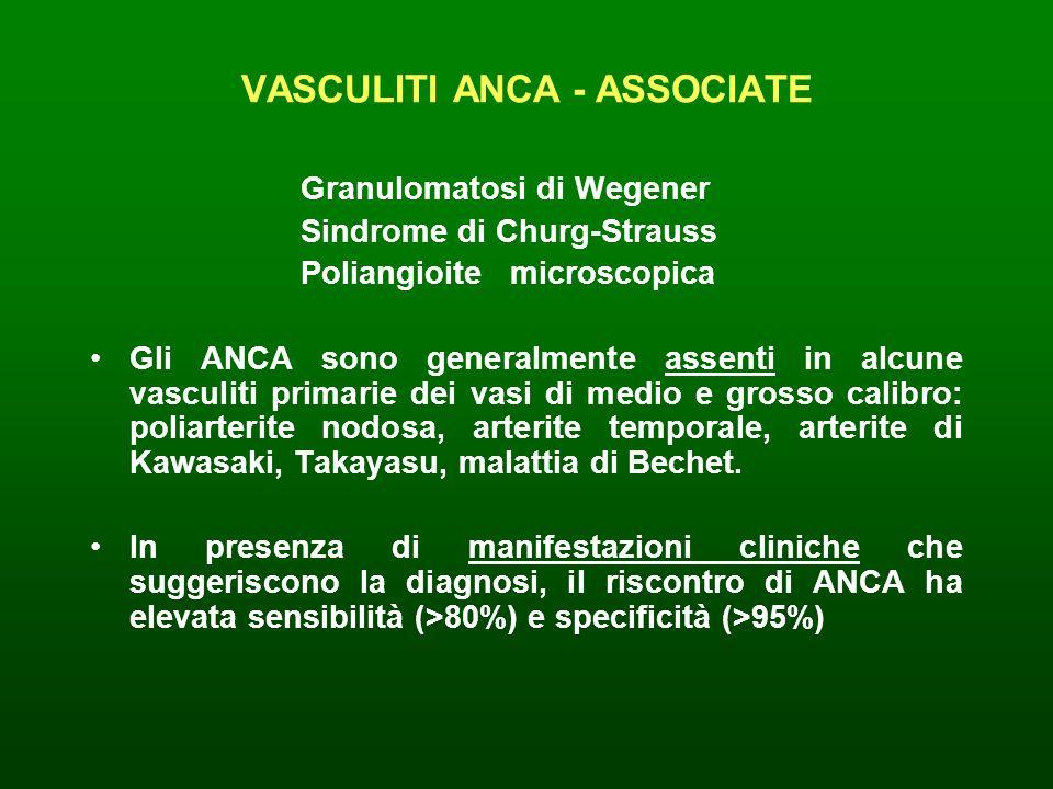 VASCULITI ANCA - ASSOCIATE